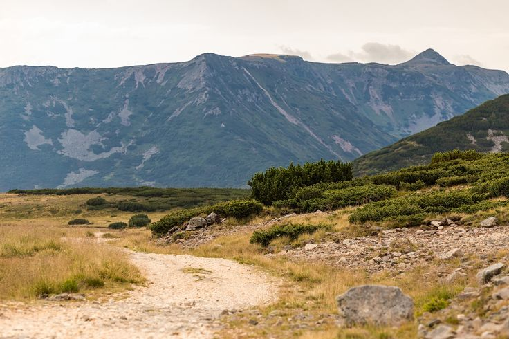 The long road ahead - The main crest of Calimani Mountains  with Negoiu Unguresc (2081m) in the middle and Pietrosul Calimani to the right (2100m)