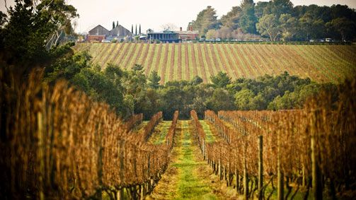 Inspiration - Mornington Peninsula Wine Region