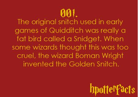 Harry Potter Facts #001