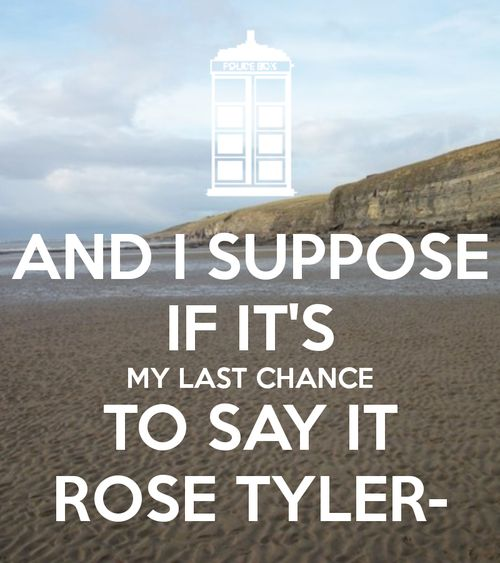 Cue hysterical sobbing.: Heart Break, Timey Wimey, Life Lessons, Rose Tyler, The Doctor, My Heart, Doctors Who, Dr. Who, So Sad