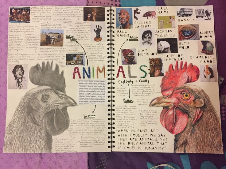 Animals A-Level Art - Animal captivity MIND MAP