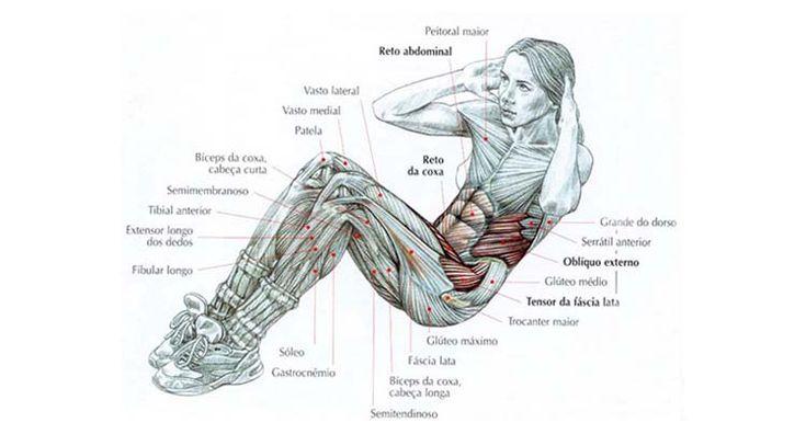 Los ejercicios que forman parte de una rutina de abdomen deben enfocarse en las tres zonas abdominales: la superior, inferior y áreas laterales, para de esta manera lograr el aplanamien…