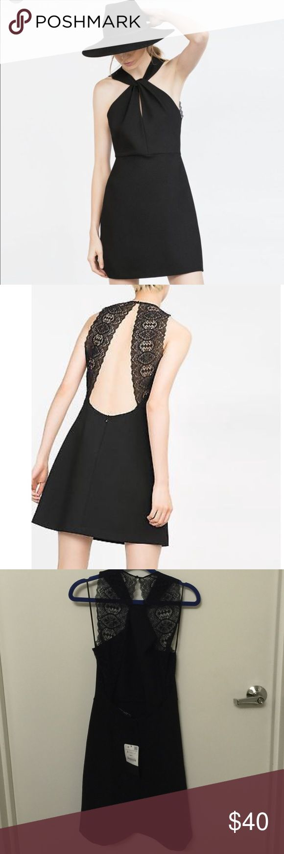 Knotted halter skater dress with lace back Rare Zara black knotted halter skater dress with laced back. Perfect cocktail dress for night out or parties. Zara Dresses Mini