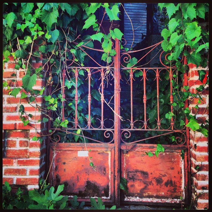 Büyükada'da yaz. Sevimli bir kapı