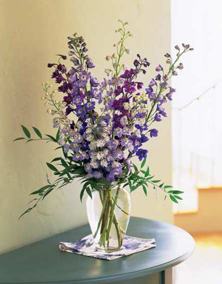 Delphinium arrangement