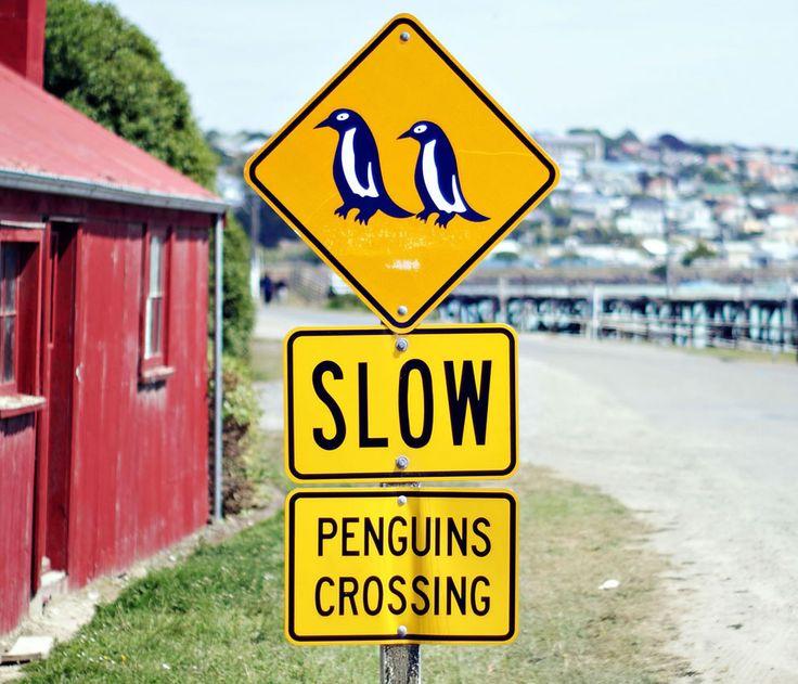 Oamaru, NZ