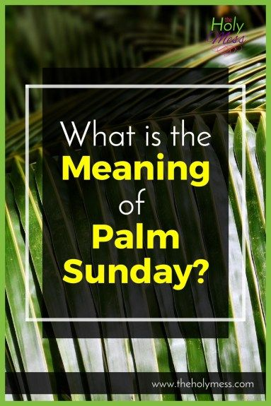 Palm Sunday marks the beginning of Holy Week, the last week of Lent. Learn what happened in Jesus' life on this day, and why you should celebrate it. What is the Meaning of Palm Sunday?|The Holy Mess