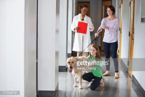 Stock Photo : Family taking pet to the vet