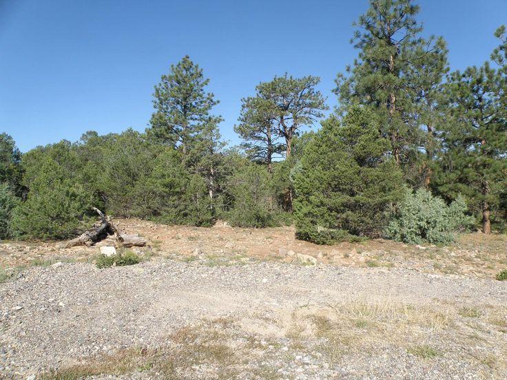 Southwestern Colorado Mountain Land for Sale