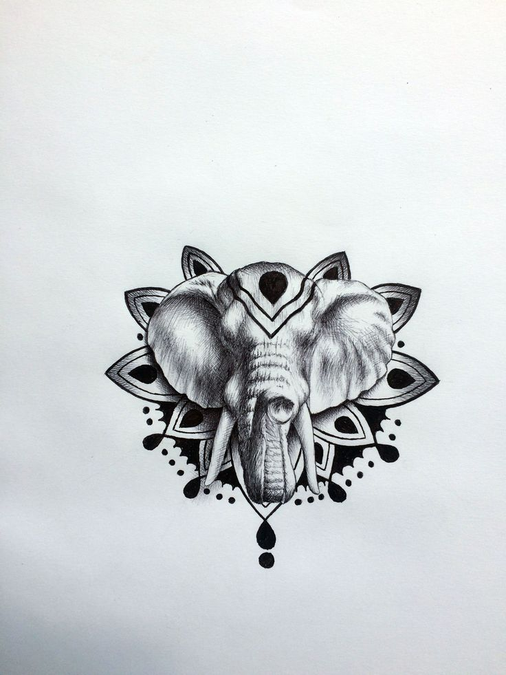 elephant head tattoo drawing