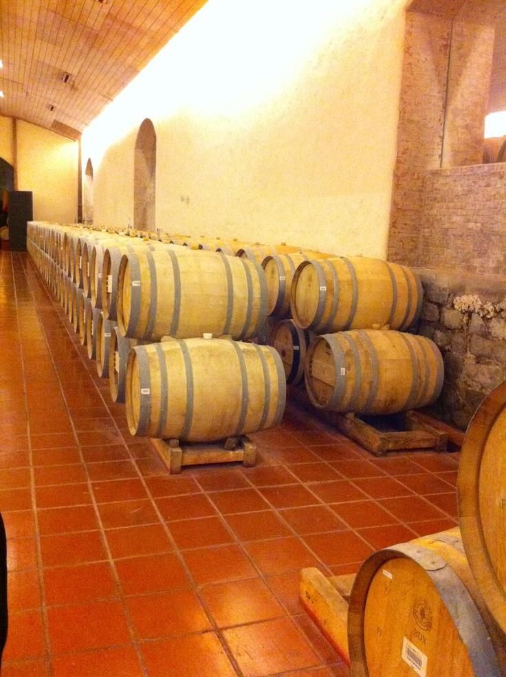 Tonéis de Vinho
