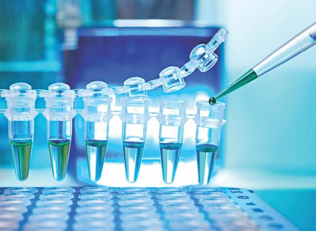 Bangladesh is aiming to develop 30 world-class drug makers in the next decade in order to establish a strong foothold in the global pharma markets