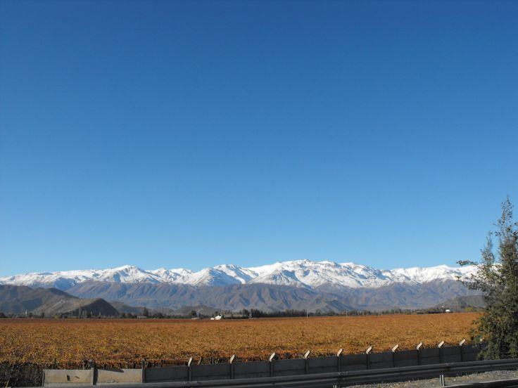 Cordillera de Los Andes  http://cumbrenueva.cl/excursiones/excursiones.html