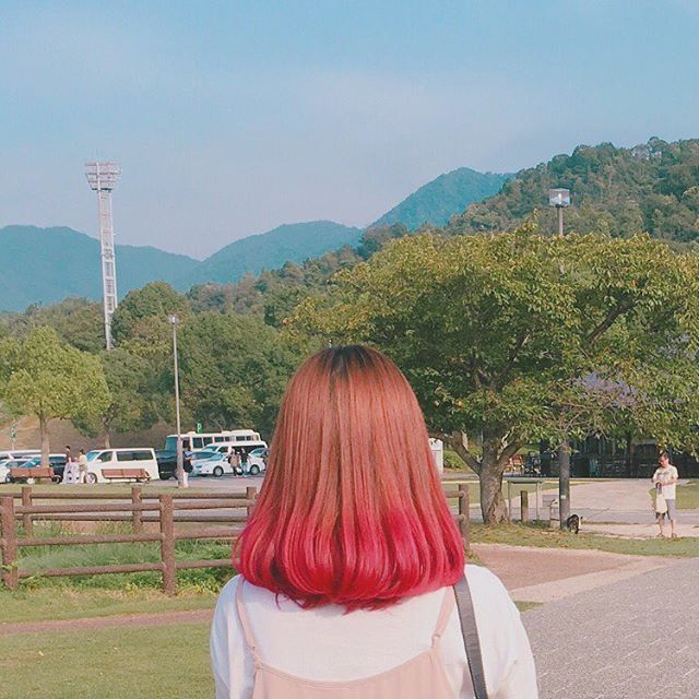 WEBSTA @ hzkgram - 9월 10일尾道CAで写真では赤っぽいけど、実際はぺえの髪色みたいに紫がかったピンクでめっちゃ派手見本並みに鮮やかに染まっててびっくりはやく色落ちしてー#그라데이션염색#투톤염색#핑크#보라색#컬러링#셀프#마닛크 패닉#마니파니#マニックパニック#マニパニ#グラデーションカラー#manicpanic#manipani#フューシャショック