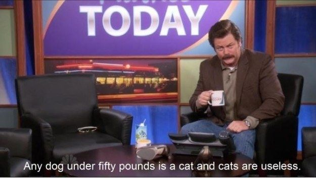 31 Ron Swanson Moments That Will Always Make You Laugh