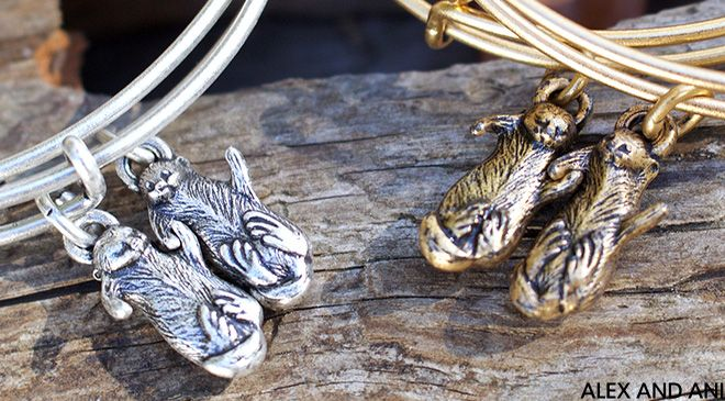 Side by Side (Otters) | CHARITY BY DESIGN | ALEX AND ANI | Charmed Life