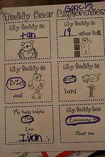 {Teddy Bear Exploration for Bear Unit//Great for Basic Concepts for younger kiddos}