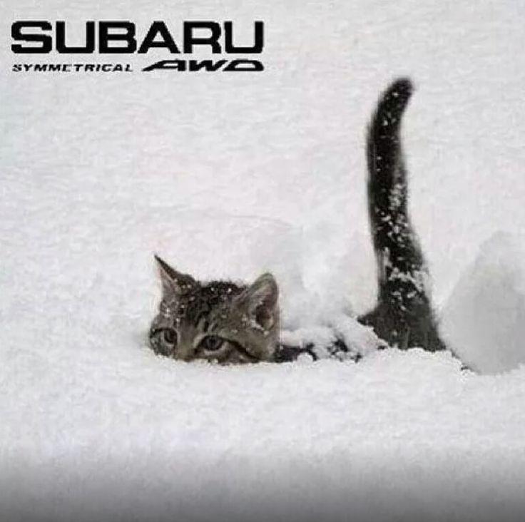 Subaru Symmetrical AWD. Subaru for sale near Minneapolis. >> http://www.bloomingtonsubaru.com/                                                                                                                                                      More