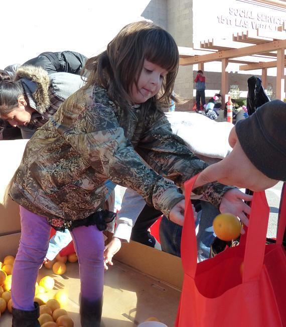 Samantha, age 4, picks out oranges