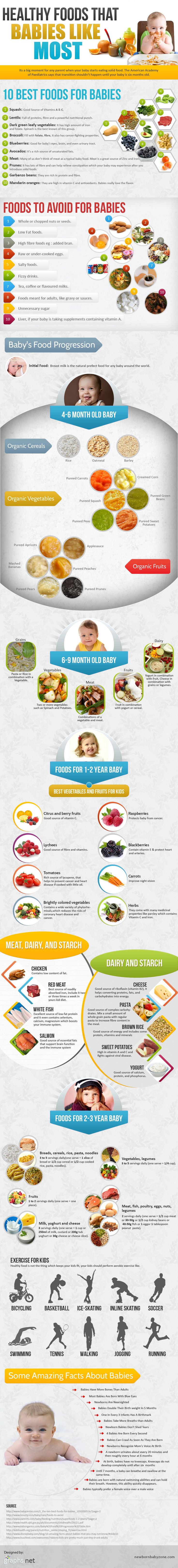 Baby food progression infographic