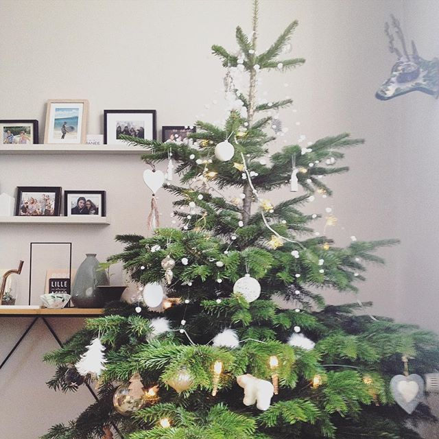 Ca y est, le sapin est en place ! #noel #christmas #xmas #christmastree #ornaments #winter #myhome #dccv #madecoamoi #frenchblogger