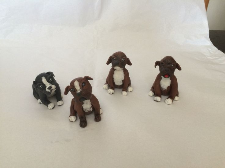 Boxer puppies fondant