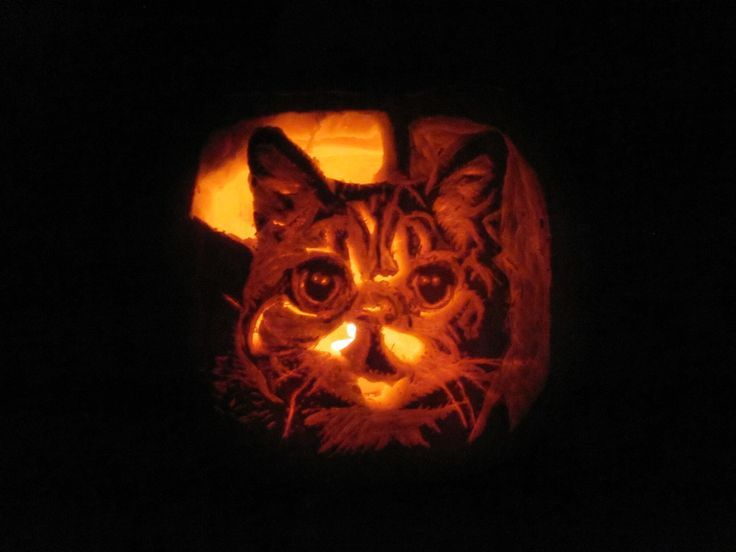 93 best pumpkin carving ideas images on pinterest