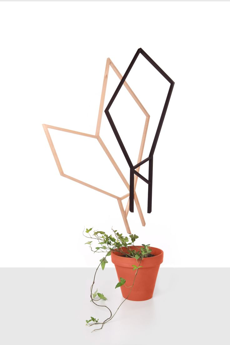 Symbiont / Forest in our homes - wooden structures supporting the growth of the plants_ 2012_Lenka Damová