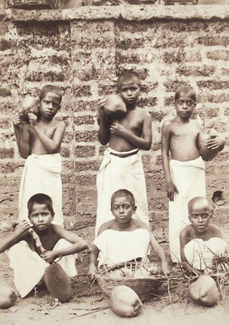 Jackfruit and Coconut - Kerala 1905