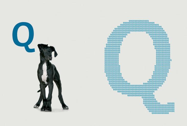 AD QUALITATEM es un organo regulador independiente responsable del control de calidad de las profesiones sanitarias. Esta isntitución ha creado la primera norma de calidad para clínicas veterinarias de pequeños animales. En este proyecto hemos reforzado el carácter institucional del organismo para dotarlo de rigor y que el distintivo reflejase la notoriedad que requería sin caer en los símbolos convencionales.