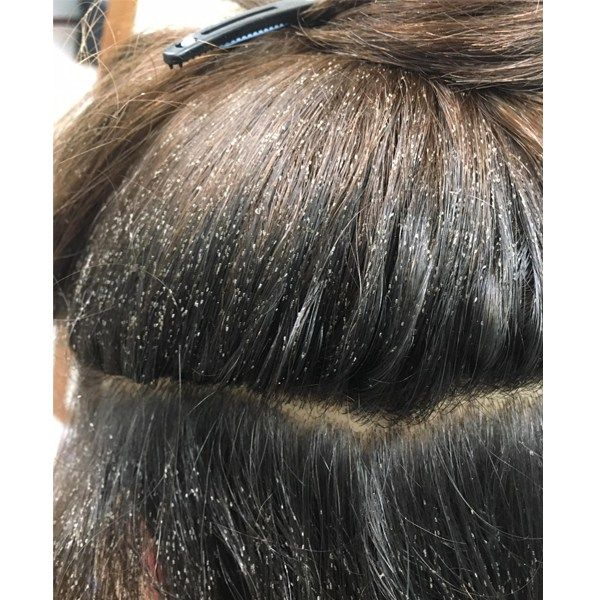 Here Are 7 Myths About Lice That Should Know About Head Louse Lice Removal Head Lice Removal