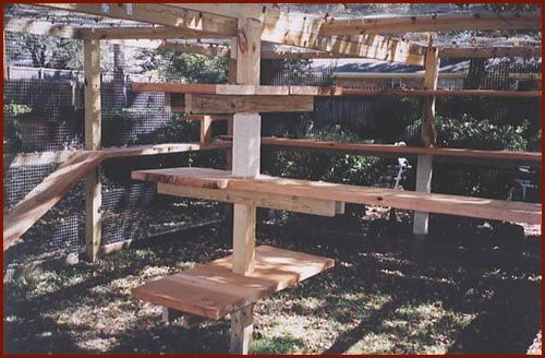 "The Cat Enclosure DIY shows ""plenty of ramps, shelves and carpeted posts to keep the kitties busy.""#catio #catrun #CatEnclosure"