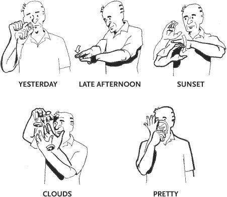 American Sign Language Letters And Words