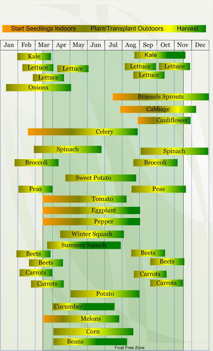 To help you plan your seed starting indoors, sowing, and harvest.  This chart is for Zone 8.  Website has chart for each zone!
