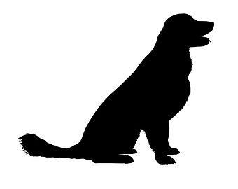 golden retriever silhouette - Google Search