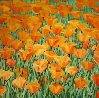 Californian Poppies Original Hand-Painted Art