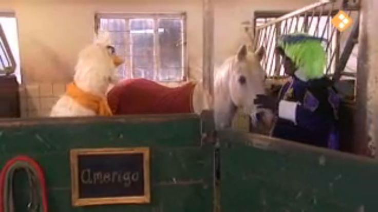 Thema: Sinterklaas & Natuur. Hoe moet je een paard verzorgen? En wat is eigenlijk het verschil tussen een wit paard en een schimmel?