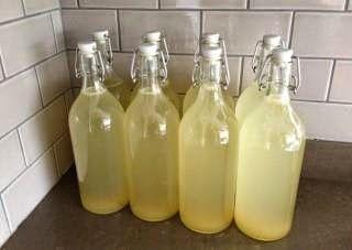 Lana van Helsdingen Outydse Gemmerbier. 6 liter water, 3 1/2 (half) kop suiker, 1 1/2 (half) eetlepel kremetart, 1 pakkie yeast (o...