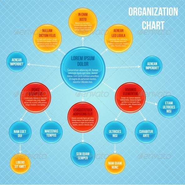 Organizational Chart Infographic - Web Technology