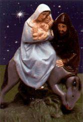 Com Amor - Nossa Senhora do Desterro