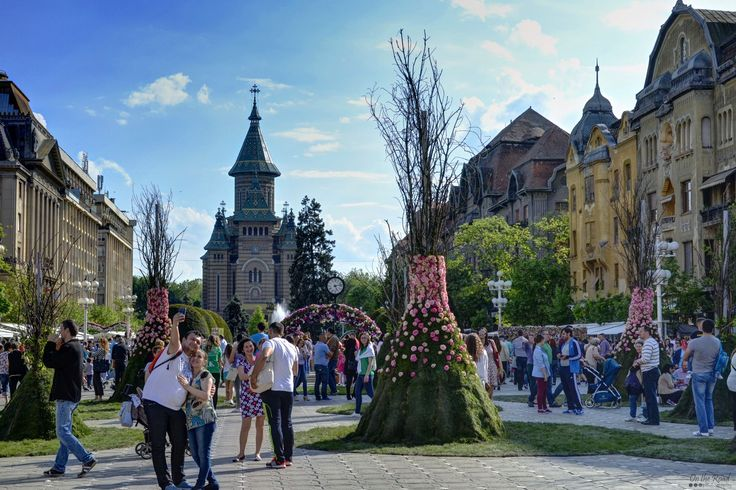 This past weekend Timisoara was very busy – the city hosted three events at the same time. My favorite was Timfloralis, the flower fair. The city center was covered in flower arrangements. Just beautiful!