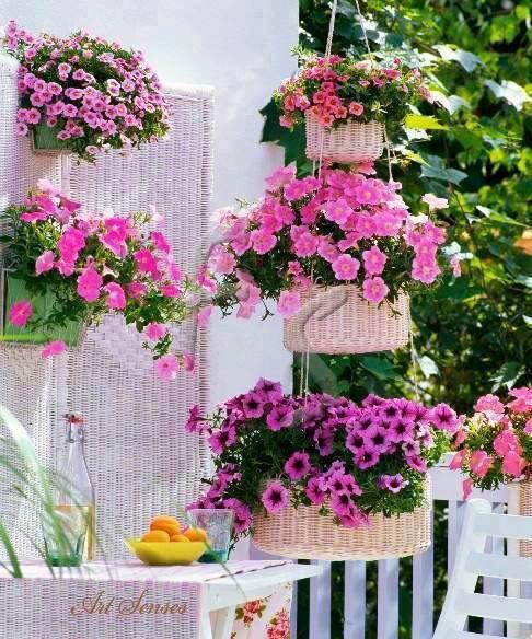 Cute vertical garden