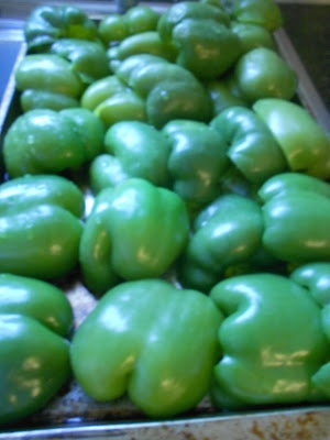 Frozen Assets- freezing green peppers