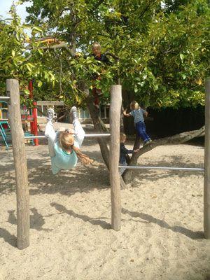 Making the school yard greener, Aloysiusschool Amersfoort, Vollmer & Partners