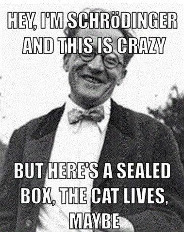 Schroendinger's cat, meet #callmemaybe.    Yep, that just happened. OR DID IT?