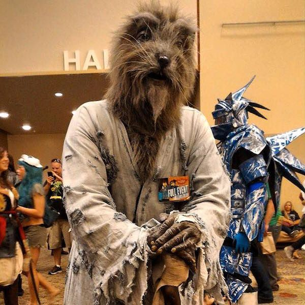 splinter cosplay