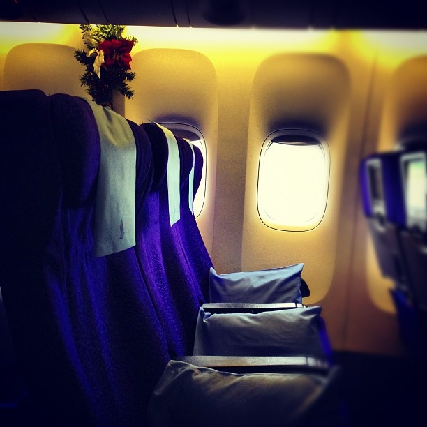Fly with SG Airline - @wikkyhappy- #webstagram