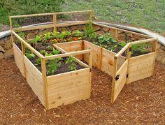*** Este seria perfeito. Medindo 8 pés por 8 pés, este jardim oferece 45 pés quadrados de espaço para o plantio, perfeito para uma família de quatro.