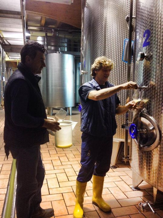 Antonio and Germano Tessari are tasting how this vintage is going