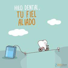 Resultado de imagen para seda dental